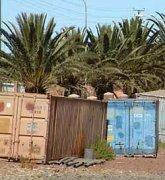 Eritrea's government increases pressure on Christians.