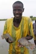 Innovative fish farms bring ministry to Senegal.