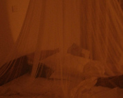 Uganda to dole out free mosquito nets in fight against malaria