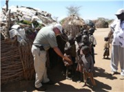 Food shortage threatens East Africa