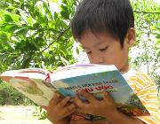 Demand for Children's Bibles grows steadily in Vietnam