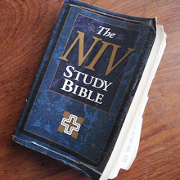 Updated NIV Bible text released for viewing online