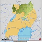 Uganda fights off Yellow Fever oubreak