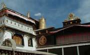 Pioneers to help Tibetan families in exile