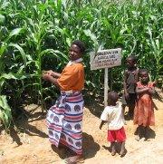 Is Malawi headed toward famine, too?