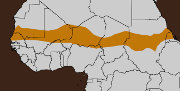 Hunger crisis continues in West Africa