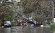 World Renew tackles hurricane relief in overlooked areas