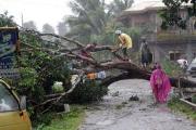 Typhoon Bopha hits the Philippines