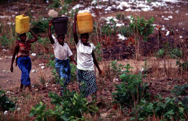 Floods destroy crops, BGR steps in
