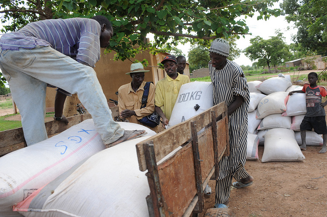 Sahel food crisis continues to rage