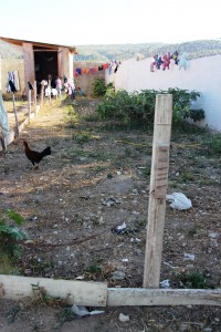 Agriculture is a big need at the Children's Village and might be a way Starfysh can partner with JHCL.