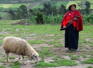 FARMS International works to reduce poverty in a Biblical way. (Photo by FARMS)