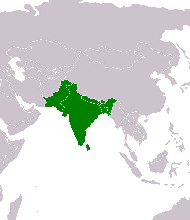 south asia highlighted in green map courtesy wikimedia commons
