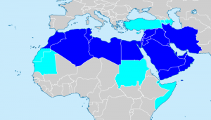 Countries typically included in the MENA region are highlighted in dark blue. Light blue countries are those that are occasionally included.  (Map courtesy Wikipedia)