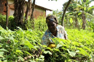 Margarite Mukankundiye gives a tour of her garden, demonstrating proper farming techniques. (Photo by Food for the Hungry)