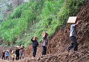 Workers deliver boxes of Bibles to persecuted Christians. (Image courtesy VOM)