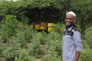 Sultan and his beehives (Photo by Food for the Hungry)