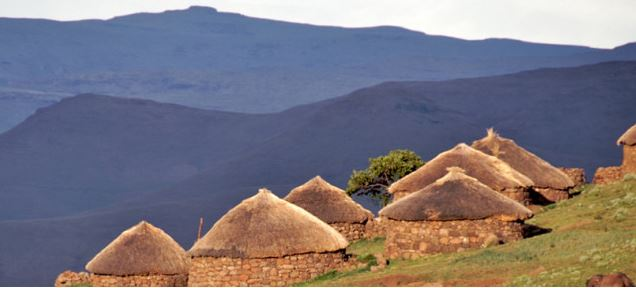 Lesotho shepherds are getting new neighbors