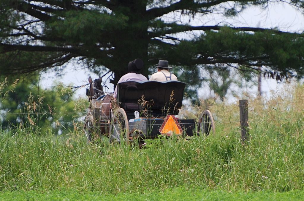 The Amish need Scripture, too