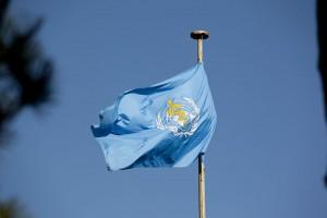 The World Health Organization was established in 1950.