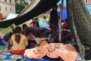 BGR_temporary-shelter