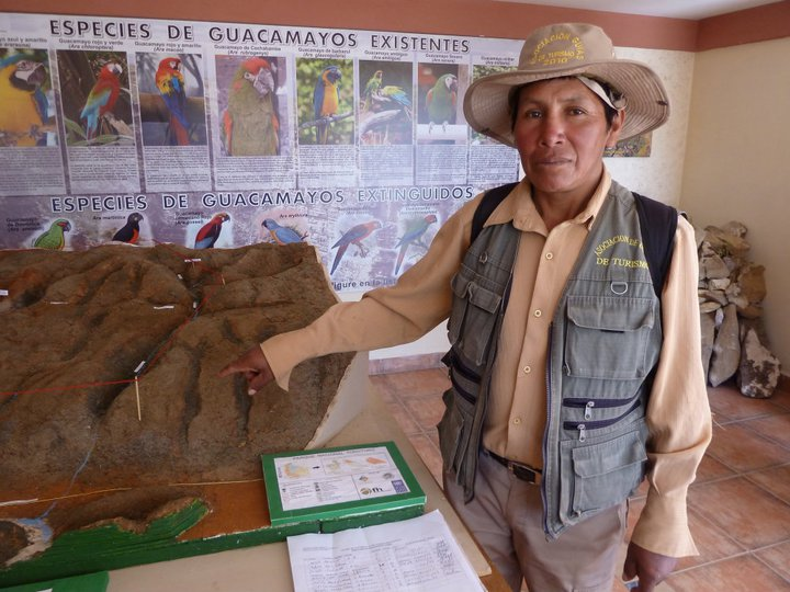 Local pest becomes tourist attraction in Bolivia