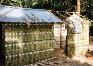 Traditional bamboo hut building: the 'weaved' walls are attached to the framework and corrugated iron is used to make the roofs.  (Photo, caption obtained via Wikipedia)