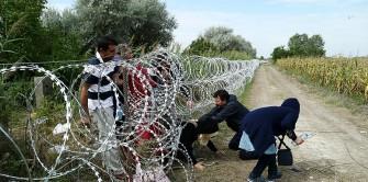 Migrants in Hungary near the Serbian border. (Photo, caption courtesy Gémes Sándor/SzomSzed via WIkipedia)