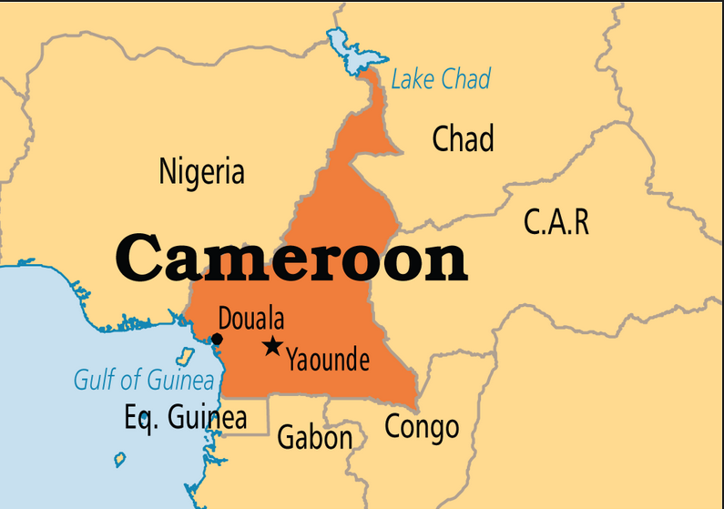 A work in progress continues, despite disruptions in Cameroon