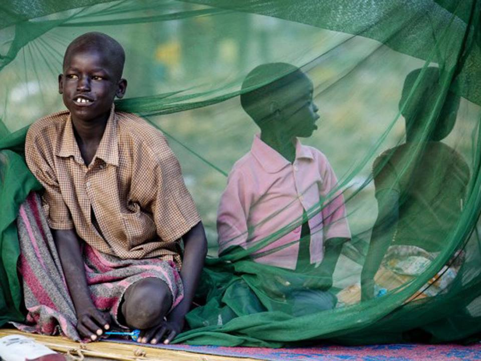 Youth in the Sahel face paralyzing poverty