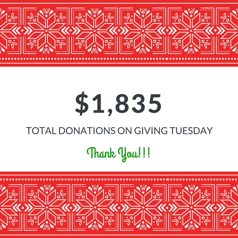 #GivingTuesday = big success for Global Aid Network