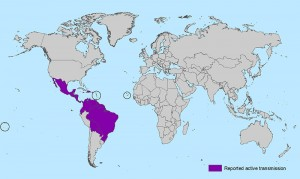 CDC list of countries with active transmission.
