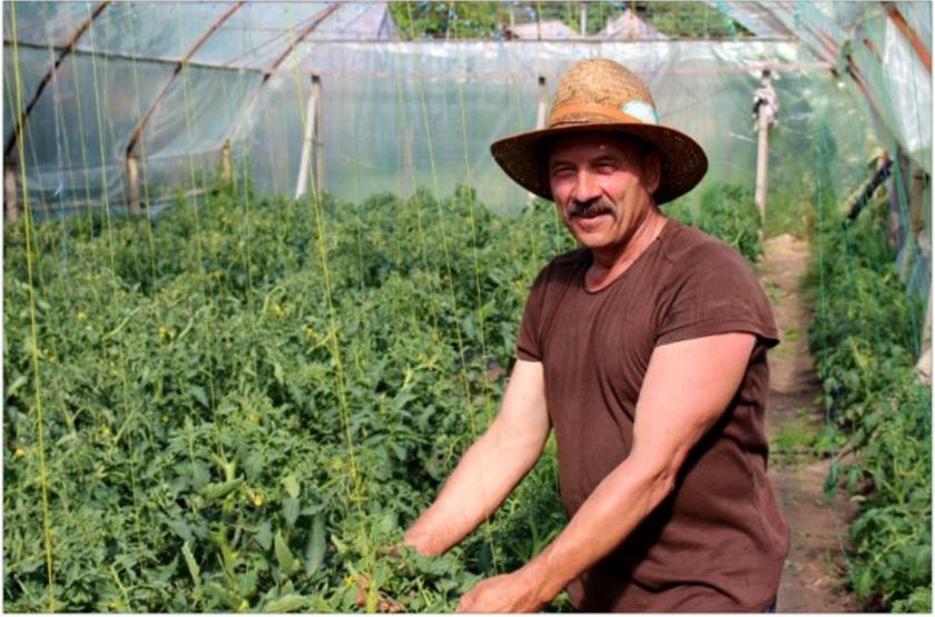 Greenhouse farming and Gospel sharing