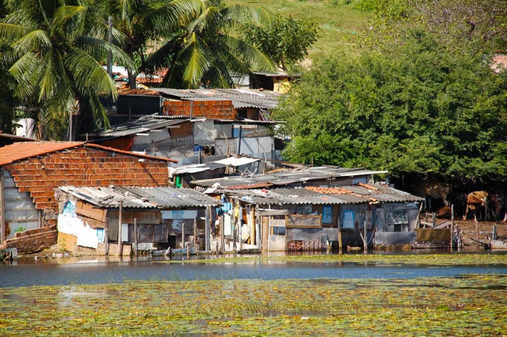 In the eye of the Zika hurricane