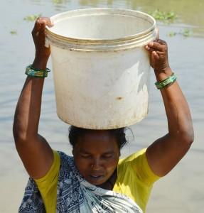 (Photo courtesy India Partners)