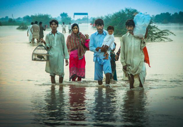 Pakistan fields underwater from monsoon floods