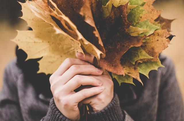 Healing at the broken Thanksgiving table
