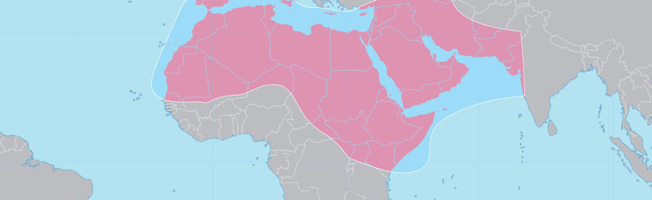 MENA: how much do you know about the region?