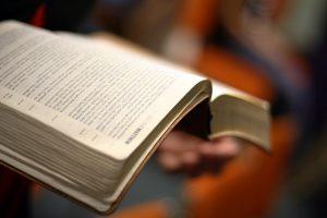 Bible, flickr