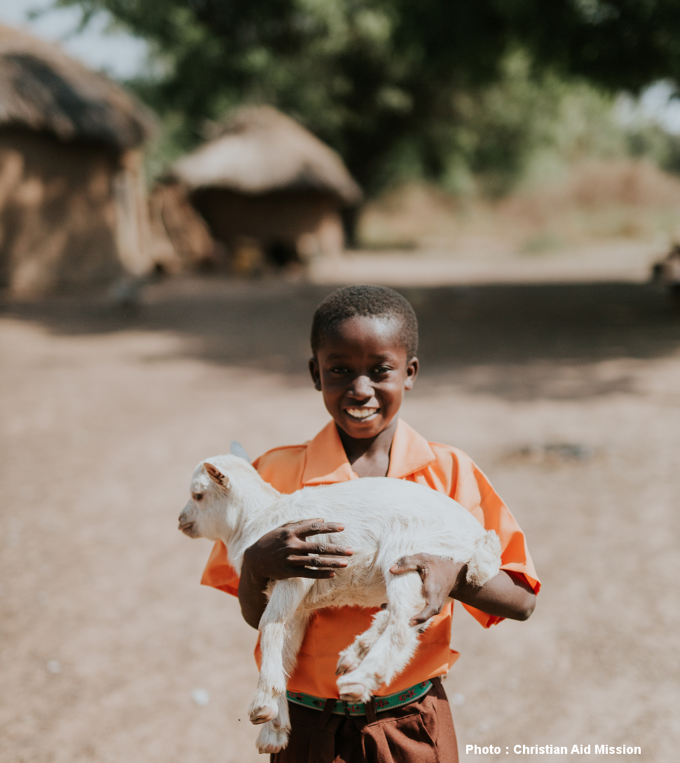 Goats for battling malnutrition in Niger