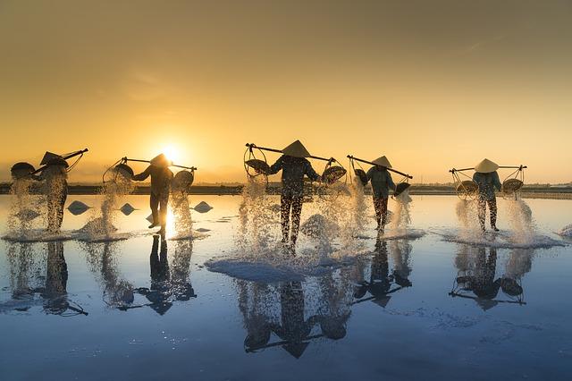 pixabay, vietnam