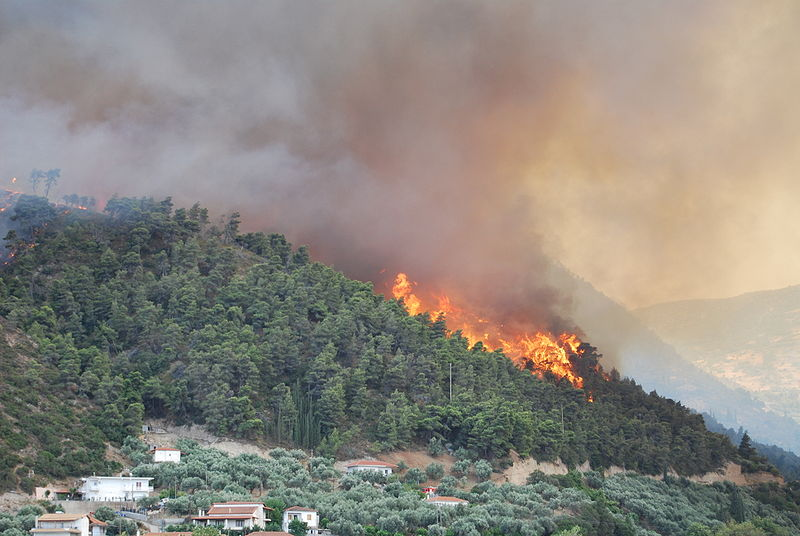 Wildfires claim more than 80 lives in Greece
