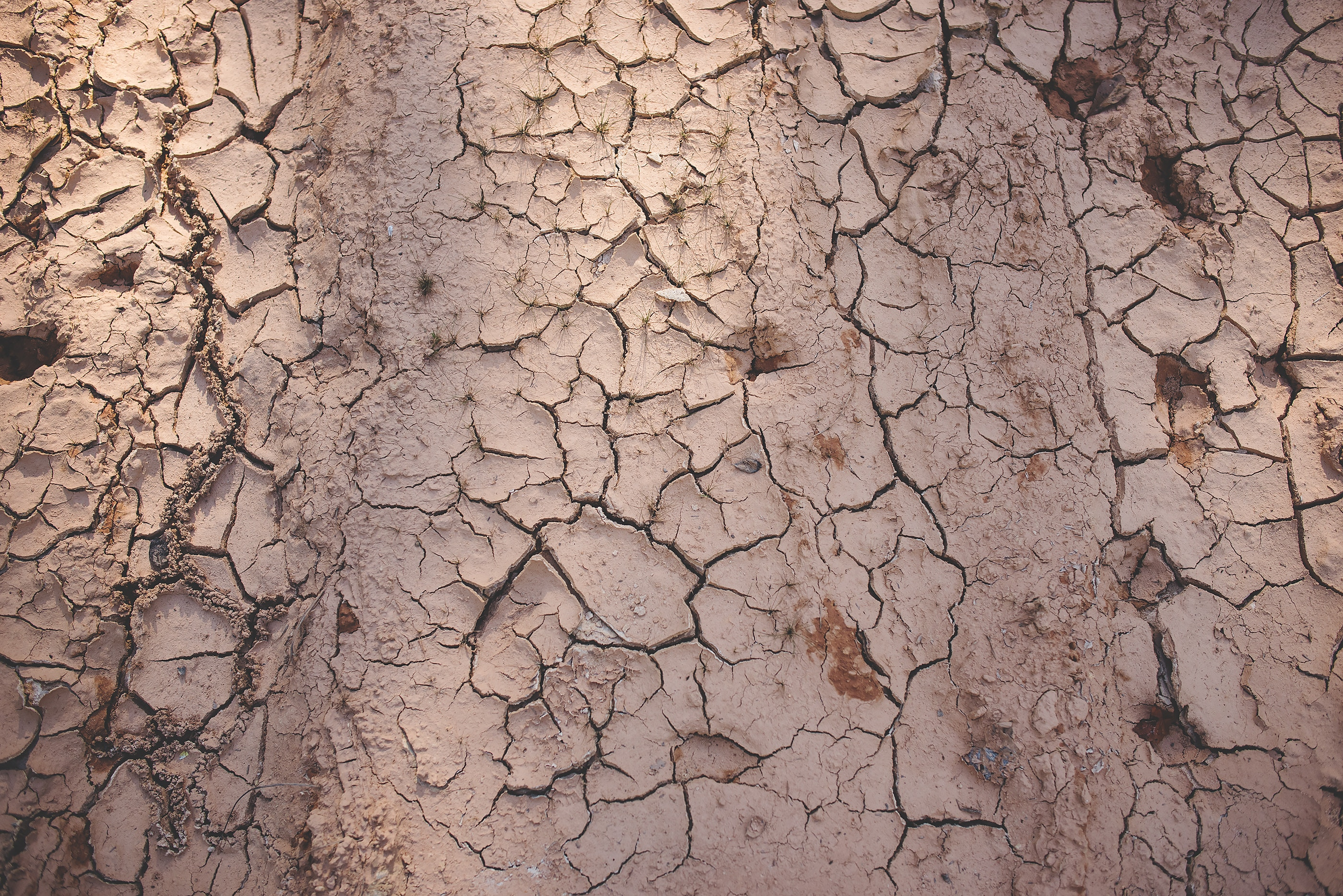 2019 brings harsh drought conditions to Kenya