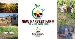 Mozambique, New Harvest Farm, ASM