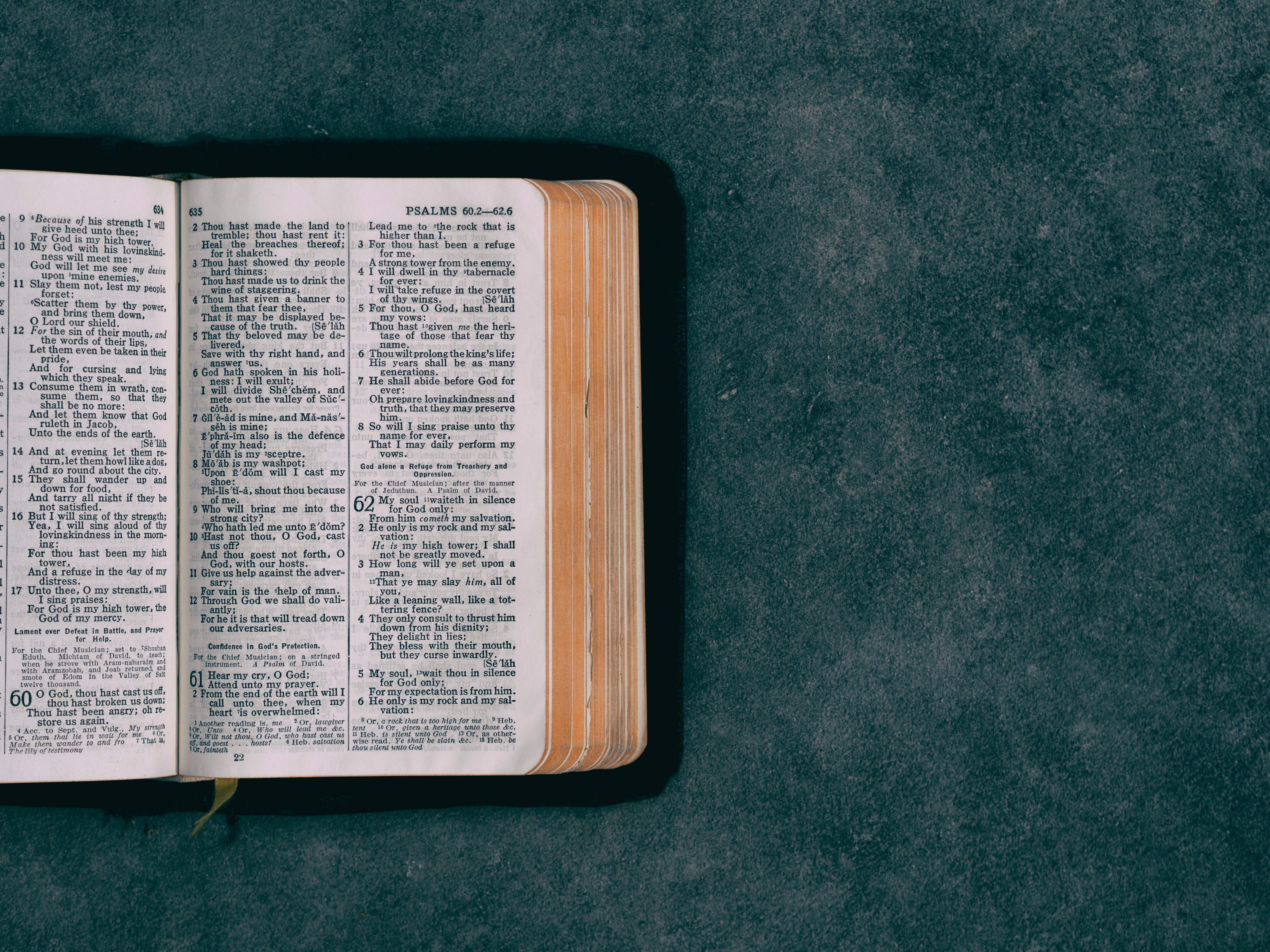 Bible distribution plans double in 2020