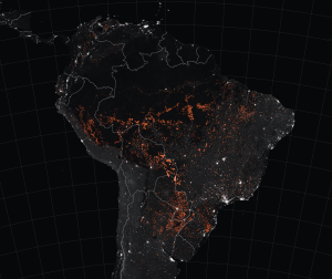 amazon fires 2019