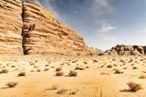 Jordan, Middle East, Ammonites