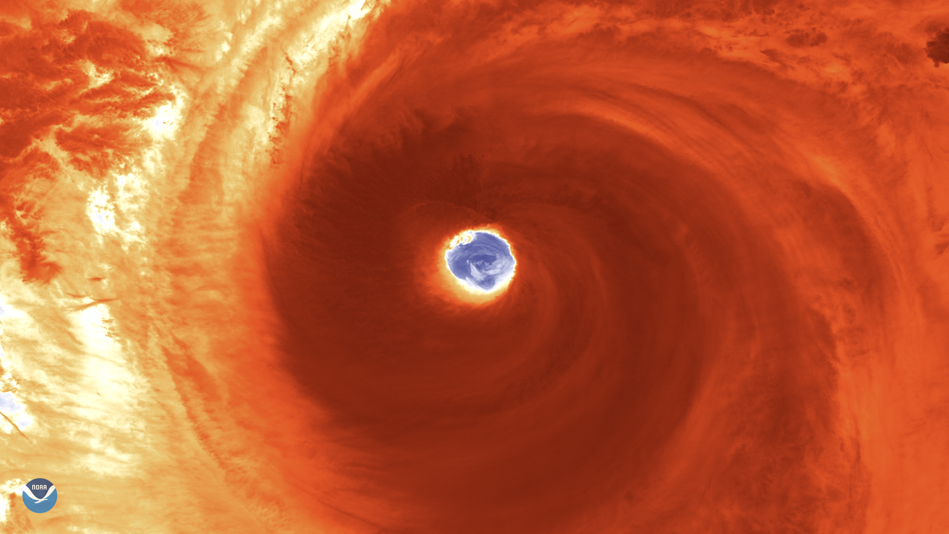 Japan: Typhoon Hagibis aftermath