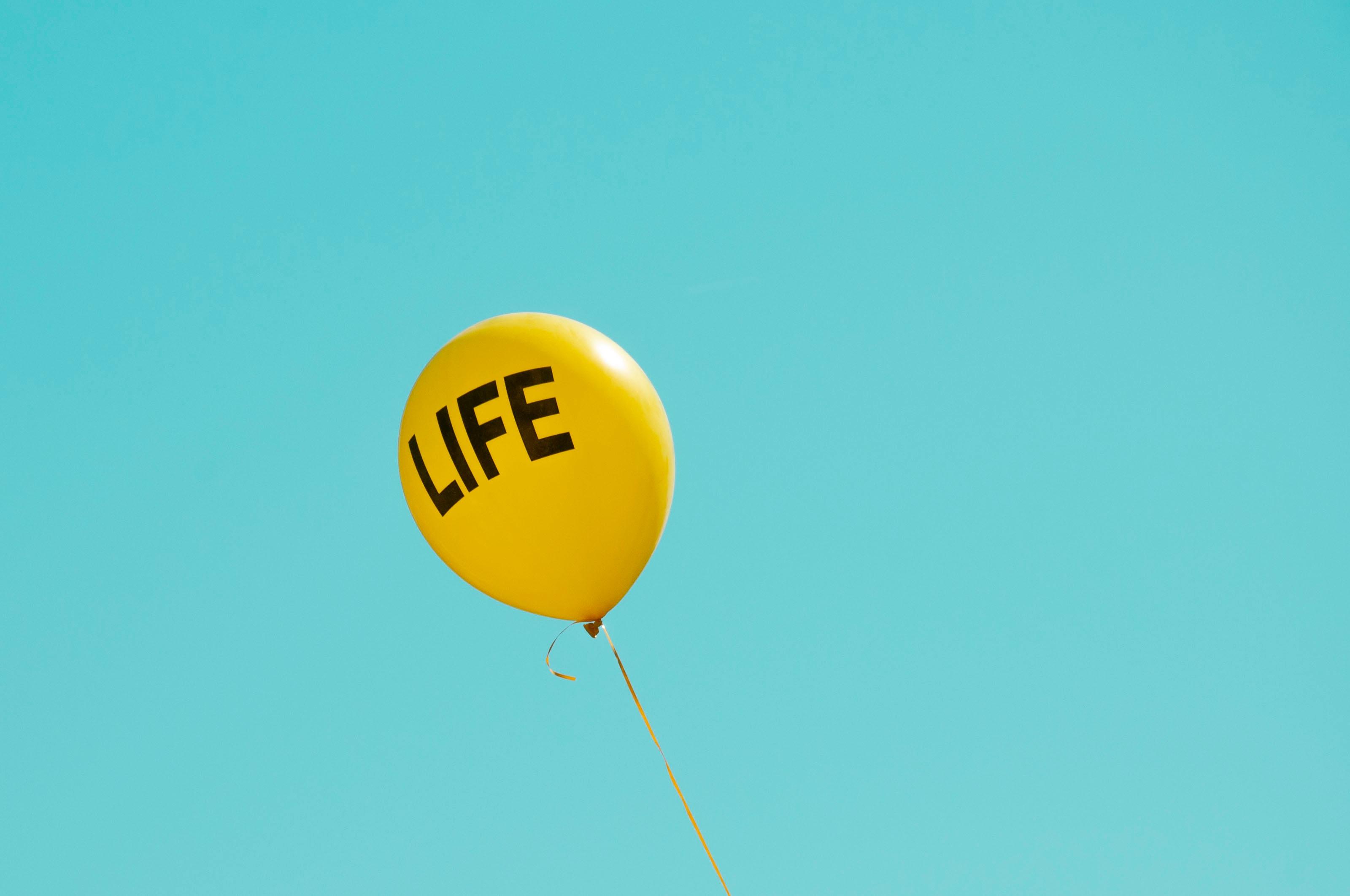 abortion, life