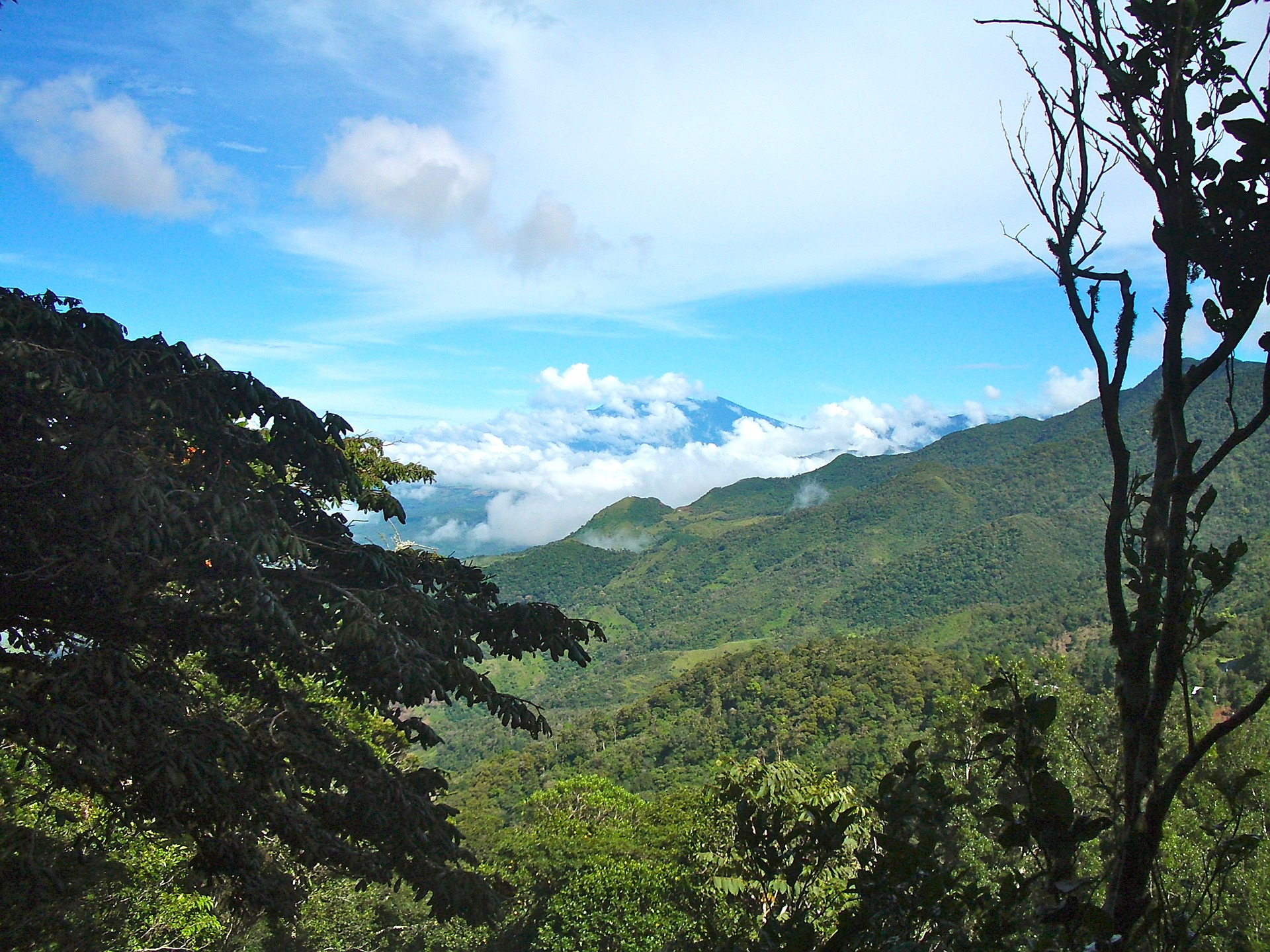 Reaching the jungles of Honduras with Scripture